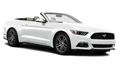 miami ford cabriolet rental